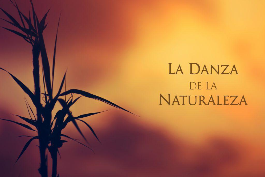 la danza de la naturaleza